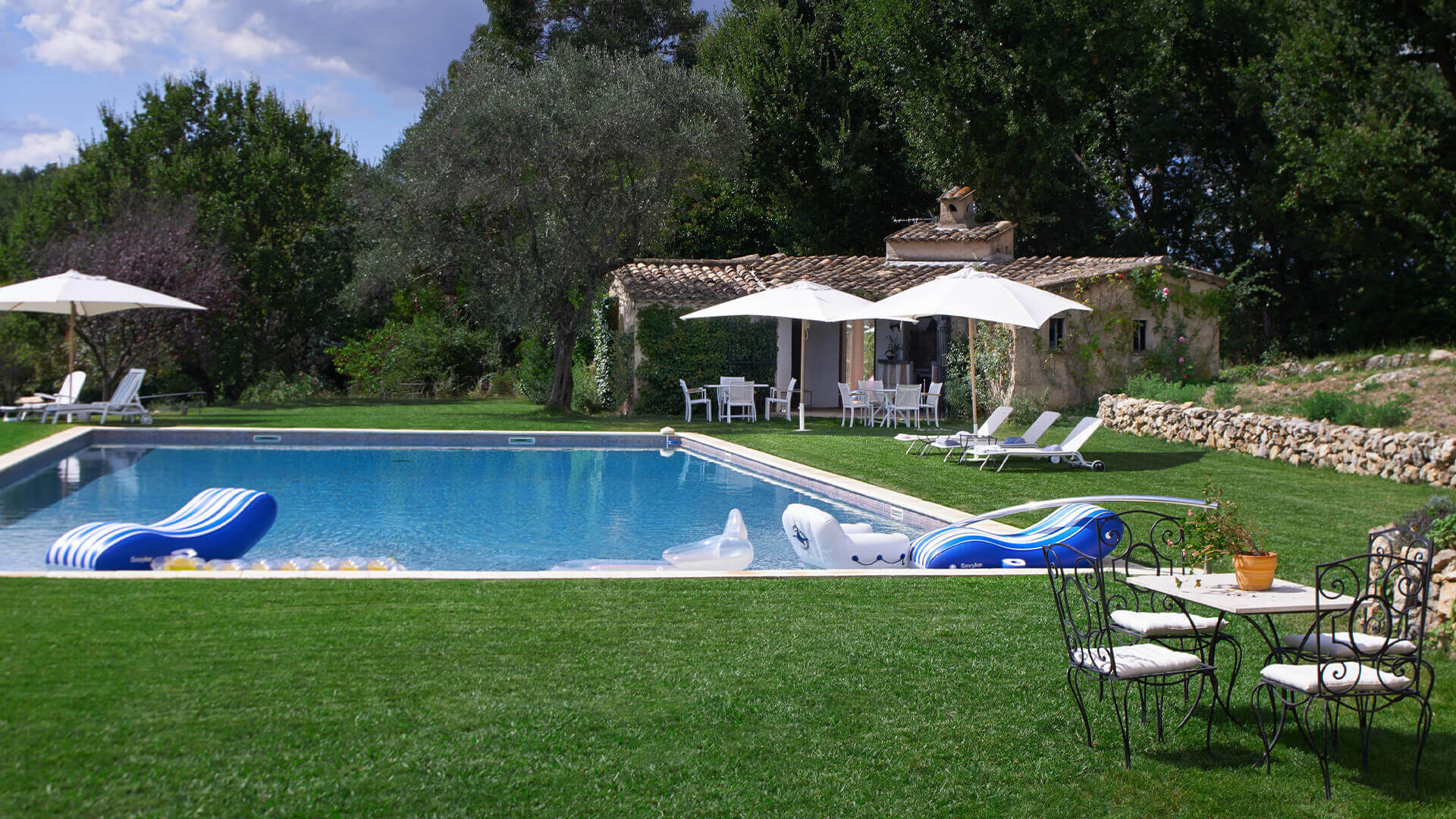 Large Domain Valbonne garden with swimming pool and guesthouse