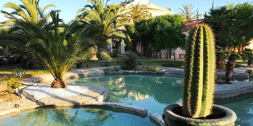 Large property outside Barcelona with swimming pool and cactus