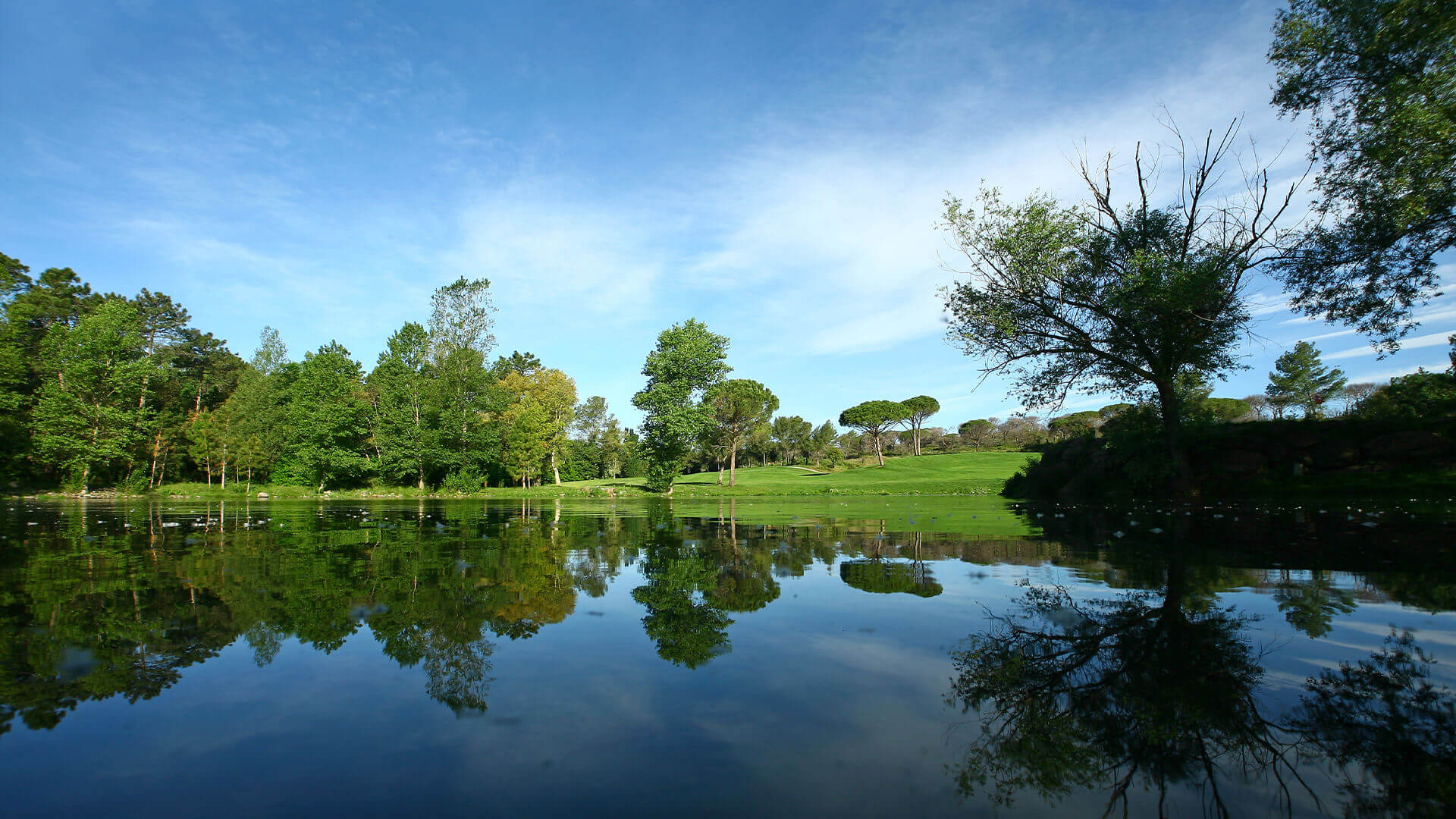 Provence golf and Spa lake and forest